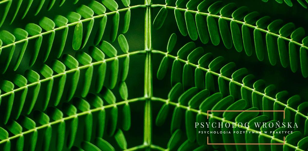 Co to jest psychologia poznawcza?